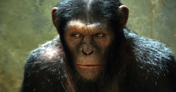 The Animation & Storytelling from Rise of The Planet of the Apes